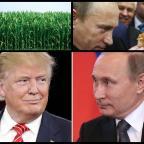 Rusia SALUD ha decidido prohibir el uso de ingredientes genéticamente modificados en toda la Producción de Alimentos,Donald Trump y Rusia: Una web que crece más enredada todo el tiempo.